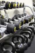 Free weights & kettlebells